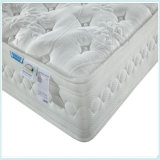 Sleep Well Hotel Compress Roll Roll Spring Mattress R25