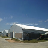 Fine Price Prefabricated Steel Poultry Farm Chicken