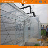 Seeding Plasctic Film Greenhouse с High Transmittance