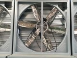 De Ventilator van de Uitlaat van het Type van Saldo van het gewicht voor de Landbouwbedrijven van het Gevogelte/Industriële Ventilator