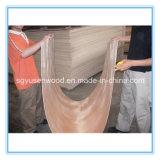 Álamo baratos Core Bintangor la chapa de madera contrachapada de
