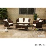 Insiemi esterni del sofà, mobilia del rattan del patio, insiemi del sofà del giardino (SF-347)
