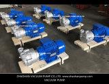 2BV2061 Bomba de vácuo de anel líquido para indústria química