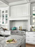 De Welbom de madeira contínua da qualidade superior gabinete 2016 de cozinha feito sob encomenda moderno