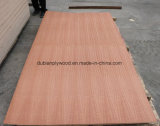 Roble / Sapele / Ash / teca de chapa de madera contrachapada de lujo / Muebles de madera contrachapada / decoración de madera contrachapada