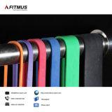 La resistenza lega il tubo di resistenza di esercitazioni della fascia di resistenza delle fasce di allenamento delle fasce di esercitazione