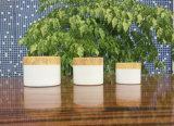 50g, 30g, 20g бамбука крем кувшин блендера, дерево косметических компаний