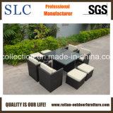 Buona qualità & Tabella esterna popolare impostate (SC-A7222-F)