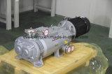 Schrauben-trockene Vakuumpumpe für ein Rieselfilmverdampfer-System