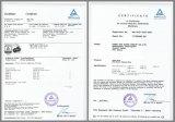 5tx3m 100% brides de levage de sangle de polyester avec le certificat de GS de la CE