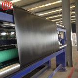 HDPE Vlotte Geomembrane die in Viskwekerij wordt gebruikt