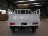 Nuovo 150cc Motor Cargo Trike