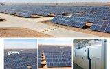 Preço baixo de alta qualidade 250 Watt constituídos Painel Solar PV