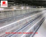 Kooien de van uitstekende kwaliteit van de Apparatuur van het Gevogelte voor de Kooi van de Kip van de Kweker