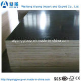 18mm Melamine Plywood voor Furniture/Construction