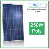 Poly panneau solaire solaire du module 250W pour le système d'alimentation solaire à la maison
