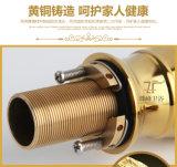 고대 호화스러운 생활 양식 영원한 물동이 믹서 (Zf-802-3)