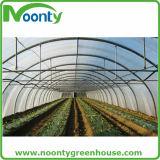 経済的な単一のトンネルのプラスチックフィルムの農業の温室