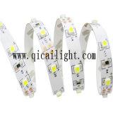 Tira impermeable del alto brillo SMD 3528 LED