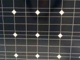 Nuovo comitato solare 300W di Technoly con l'alta qualità