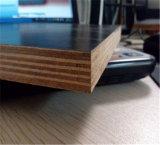 зеркало 18mm/высоко лоснисто/лоснисто/Matt/Провод-Сетки/Anti-Slip пленки смотрело на переклейку с самым лучшим ценой от изготовления Китая