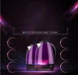 Ménage élégant Home Appliance Bouilloire électrique