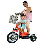 Triciclo eléctrico del nuevo diseño 2017 hecho en fabricante del profesional de China