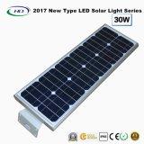 Novo tipo 2017 luz solar completa 30W do jardim do diodo emissor de luz