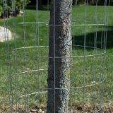 우수한 직류 전기를 통한 강철에 의하여 용접되는 철사 정원 담