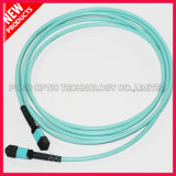 2 Alignements Pins Multimode MPO MTP Cable