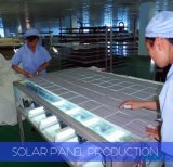 太陽ポンプのためのセリウムCQCおよびTUVの証明の260W 60cellsの多太陽電池パネル