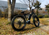 Bicicleta eléctrica del viaje 8fun de la montaña con Ce