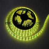 22-24lm per LED, 60LEDs/M una striscia dei 5050 LED, striscia flessibile del LED 5050