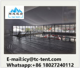 Outdoor Easy up Tents for Catering Tents one Promotional Dirty