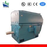 Série de moteurs asynchrones triphasés à haute tension Ytm / Yhp / Ymps for Coal Mill