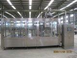 10000b/H het Automatische Vruchtesap van uitstekende kwaliteit Monoblock in de Flessen van het Huisdier