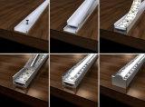 OEM LED 지구 빛을%s 알루미늄 밀어남 단면도