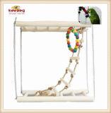 Jouets en bois normaux d'animal familier/jouets d'oiseau pour jouer (KBB005)