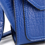 Ailes neuves de sac d'emballage de sac à main rétro en automne et hiver (GB#CE0714)