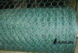 Sailin PVC上塗を施してある六角形の金網