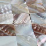 Мать раковины радужного реки пресноводная плитки мозаики перлы