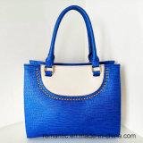 普及した新しいStuds PU方法様式の女性袋(LY060223)