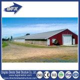 Moldura de aço Broiler Poultry Farm Construction Shed Layout