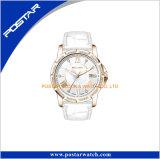 Vestido de mujer Diamante CZ Diamante completa edición limitada de cristal Reloj de pulsera