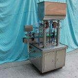 Het automatische Deeg van de Zuiger van 2 Hoofden en Vloeibare het Vullen Machine voor Saus (GT2T-2G)