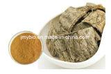 10%~98% Chlorogenic酸のEucommia Ulmoidesのエキス