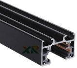 1 circuite 3 fils allumant la piste pour le projecteur de DEL (XR-L310)