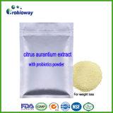 Citrus aurantium Extrait de la synéphrine probiotiques La perte de poids pilules minceur