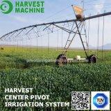 Mittelgelenk-Bewässerungssystem-Sprenger-Gewehr-Bewässerung
