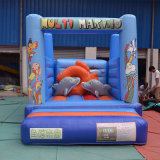Mini principessa Inflatable Bouncer per divertimento